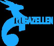 fd gazellen prijs voor webbureau